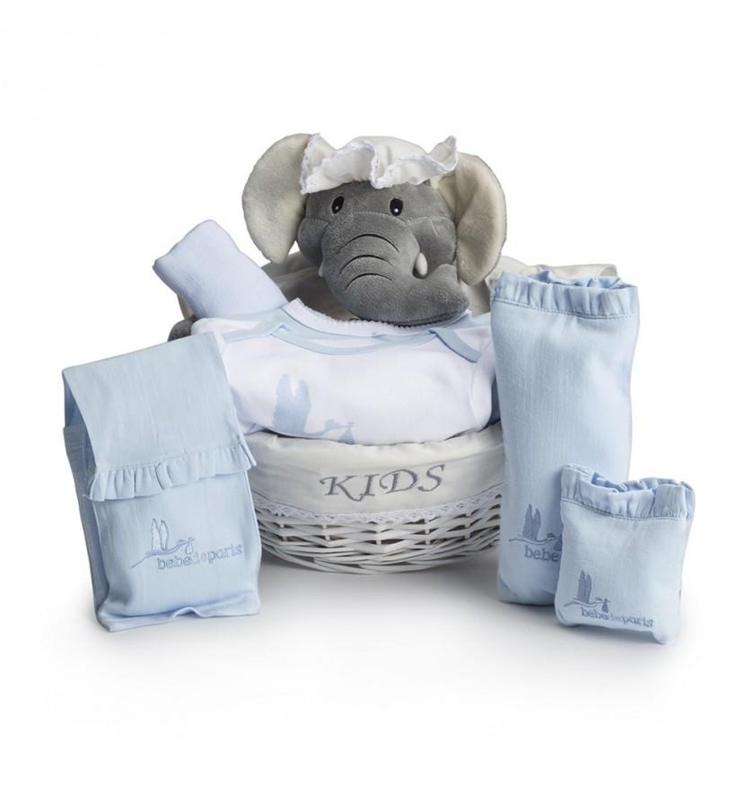 Baby Geschenkkorb Nach dem Krankenhaus Basic Blau